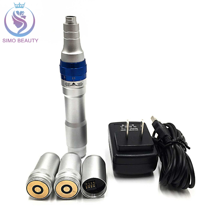 Personal Use Cosmetic Devices Micro Needle Rechargeable Derma Roller Pen